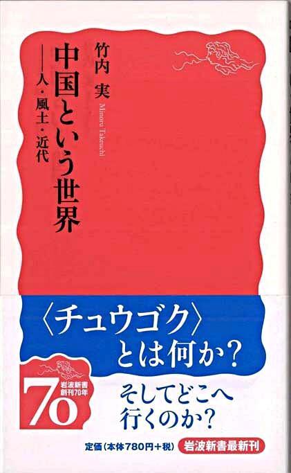 中国という世界 <岩波新書 新赤版1174>